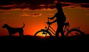 Paseo en bicicleta al atardecer